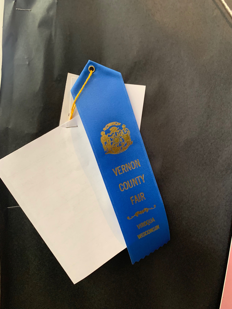 High School art department earned a blue ribbon at the fair!